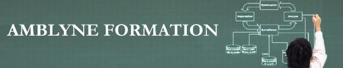 Amblyne Formation - Philippe Casano - Spécialiste ITIL